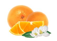 Fresh orange and slices with flowers isolated on white Royalty Free Stock Photo