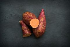 Fresh orange sweet potato on dark background royalty free stock image
