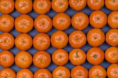 Fresh orange, tangerine fruit, mandarin pattern background, close up Royalty Free Stock Image
