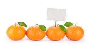 Fresh orange tangerine with price tag Stock Photography