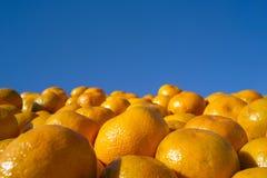 Fresh orange tangerines Royalty Free Stock Photos