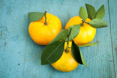 Fresh orange tangerines with green leaves.  Royalty Free Stock Photos