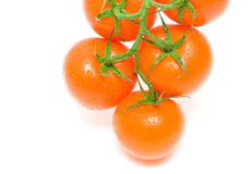 Fresh orange tomatoes isolated on white background Stock Image