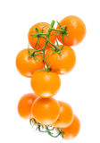 Fresh orange tomatoes  in water drops on a white background with Stock Image