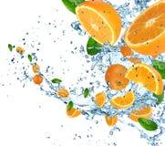 Fresh orange with water splash Royalty Free Stock Image