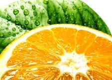 Fresh orange with wet leave macro Royalty Free Stock Photo