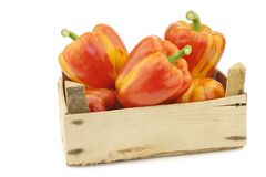 Fresh orange and yellow `enjoya` bell peppers capsicum in a wooden crate. On a white background royalty free stock photos