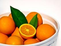 Fresh oranges Stock Photos