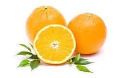 Fresh oranges. On white background stock photo
