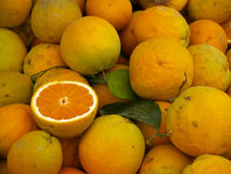 Fresh oranges. Oranges on a market stand royalty free stock photo