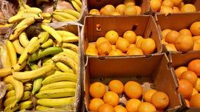 Fresh oranges and bananas Stock Image
