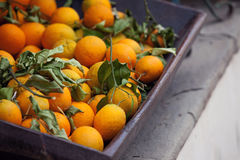 Fresh oranges in a basket Stock Photo