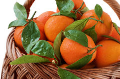 Fresh oranges in the basket with leaves Royalty Free Stock Images