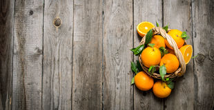 Fresh oranges in the basket with leaves. Royalty Free Stock Photos