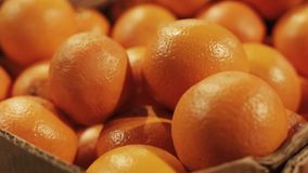 Fresh oranges in a basket in a supermarket picked from organic farm or bought from supermarket. Selective focus. Close-up. stock video footage
