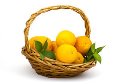 Fresh oranges in a basket Stock Image