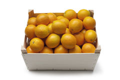 Fresh oranges in a container Stock Photography