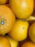 Fresh oranges at fruit department in supermarket. Stock Photo