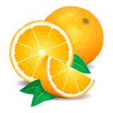 Fresh oranges fruit, pieces of orange. Realistic oranges, vector Stock Photo