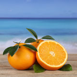 Fresh oranges fruits on the beach with copyspace Stock Images