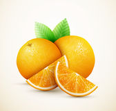 Fresh oranges fruits with green leaves and slices Stock Photos