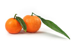 Fresh oranges with green leaves isolated Royalty Free Stock Photography