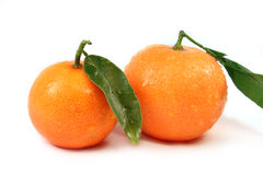Fresh oranges with green leaves isolated Stock Photography
