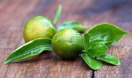 Fresh oranges with green leaves Royalty Free Stock Photography
