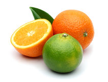 Fresh Oranges and Green Tangerine Stock Image