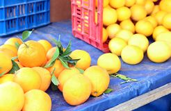Fresh oranges at a greengrocers shop Stock Photography