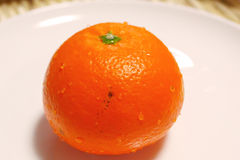 Fresh oranges from Japan Stock Photography