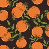 Fresh oranges, leaves, decorative background. Seamless pattern with citrus fruits vector illustration