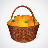 Fresh Oranges with Leaves in Wicker Basket. Vector Image Stock Photo