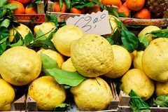 Oranges, Lemons, fruits and Vegetable at Street Markt. Fresh oranges, lemons, fruits and vegetables on a street market in Sorrento, Italy. In royalty free stock photos