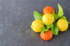 Fresh oranges, lemons and mandarines on a grey abstract background. Mediterranean lifestyle. Healthy food Stock Images