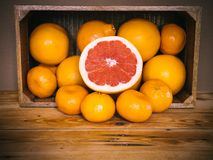 Sliced Ruby Red Grapefruit on top of oranges and mandarins. Fresh citrus fruit. stock photos