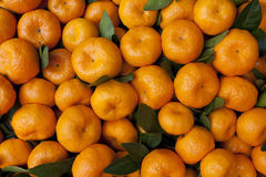 Fresh oranges in market Royalty Free Stock Photography
