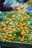 Fresh oranges at market. A large display of freshly picked oranges at a market royalty free stock images