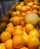 Fresh oranges and melone Royalty Free Stock Photography