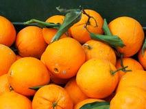 Fresh Oranges For Sale Stock Photo