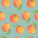 Fresh oranges stripe background, hand drawing. Colorful wallpaper vector. Seamless pattern with fresh fruits collection. Decorative illustration Royalty Free Stock Photo
