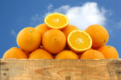 Fresh oranges and two halves Stock Photos