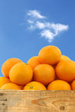 Fresh oranges and two halves Stock Photo