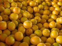 Fresh oranges wallpaper background Royalty Free Stock Image