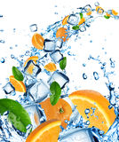 Fresh oranges in water splash Stock Images