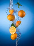 Fresh oranges with water splash Stock Photos