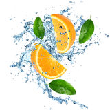 Fresh oranges with water splash Royalty Free Stock Images