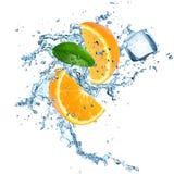 Fresh oranges with water splash Stock Photo