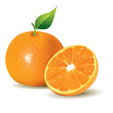 Fresh Oranges, Whole and Half Sliced Royalty Free Stock Images