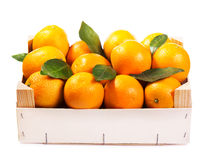 Fresh oranges in wooden box Stock Images